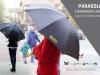 parasol z nadrukiem