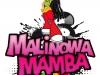 projekt logotypu Malinowa Mamba